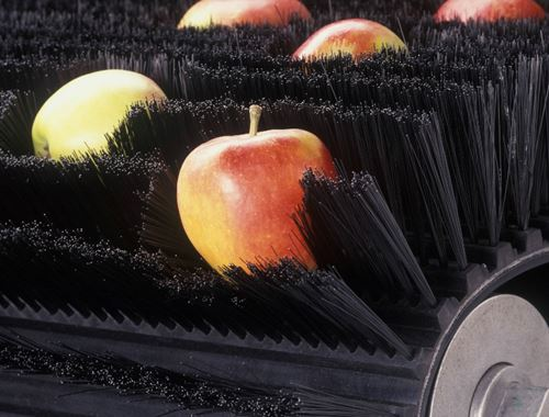 Belt with brushes for conveying apples